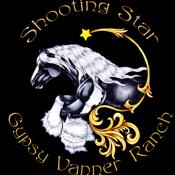 ShootingStarGypsy (jodiwatt) (jodiwatt)