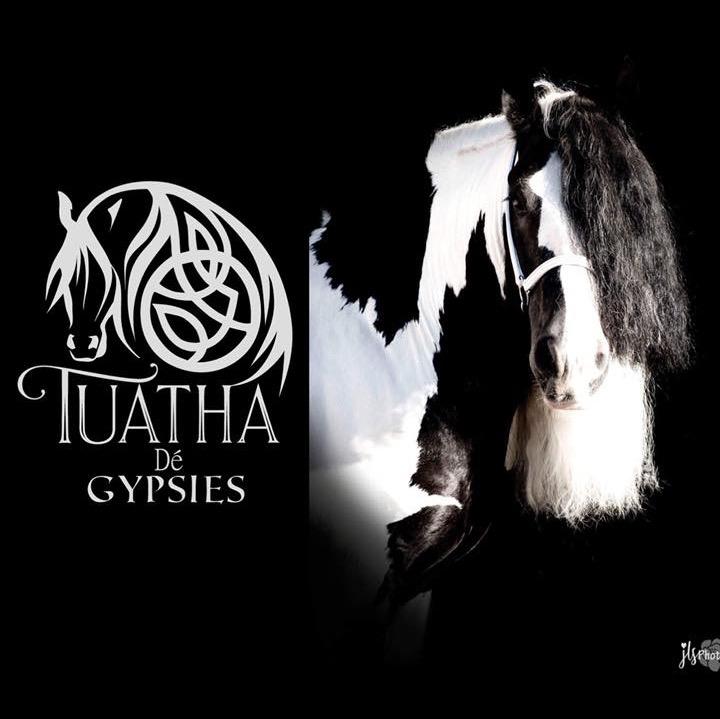 TuathaDeGypsies(PattiNelson) (TuathaDe)